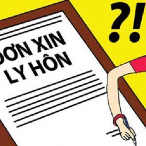 Don ly hon